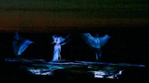 MVI_7557.wings